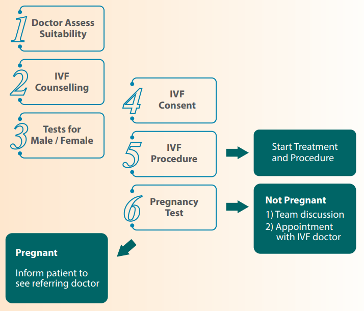 Workflow for IVF
